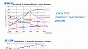 Alimentation et Cancer - V. Prevost - DFASP2 -2020